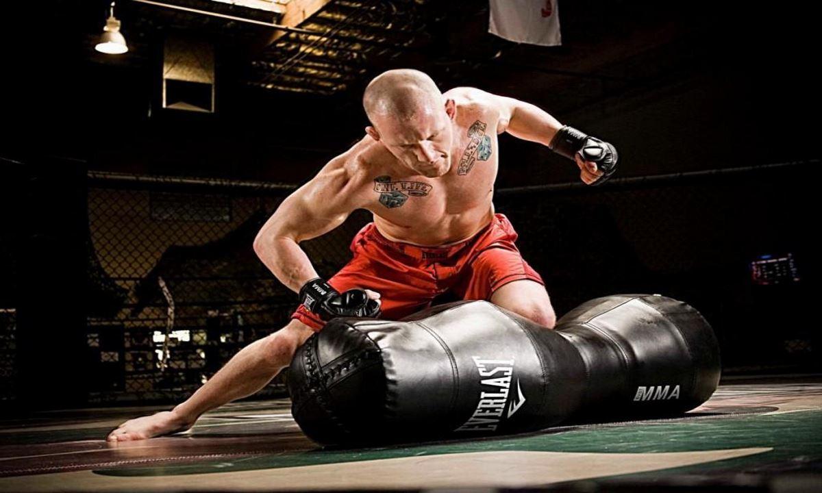 Best MMA Training Gloves
