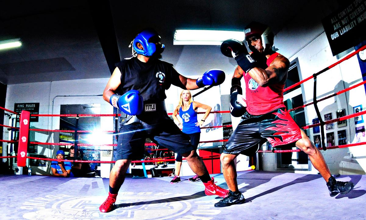 Best Boxing Gloves for Sparring