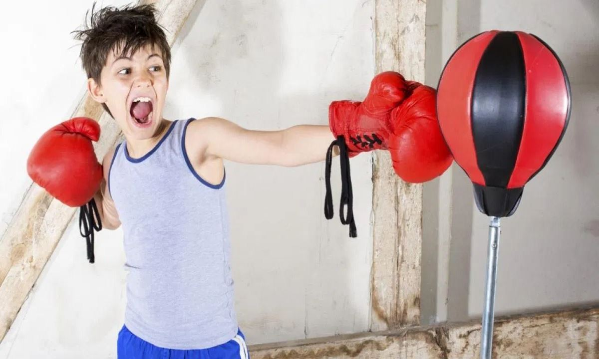 Best Kids Punching Bags